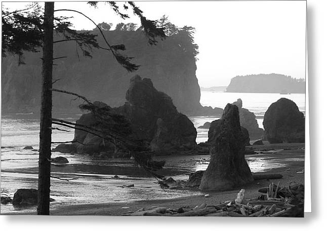 Sea Stacks Greeting Card by Sonja Anderson