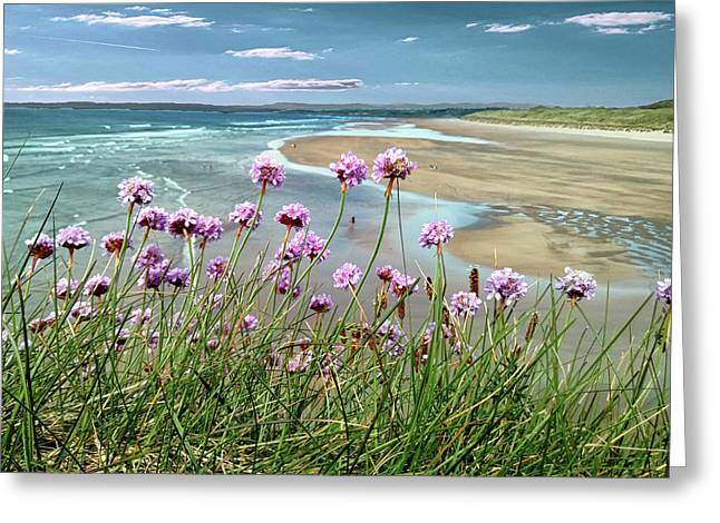 Sea Thrift Wild Flowers - On The Cliff Edge Above Tullan Strand Greeting Card