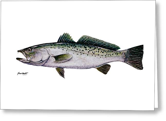 Sea Trout Greeting Card by Kevin Brant