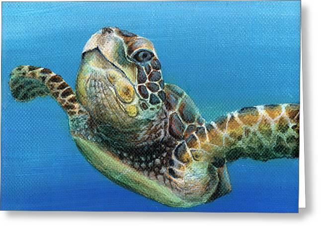 Sea Turtle 3 Of 3 Greeting Card
