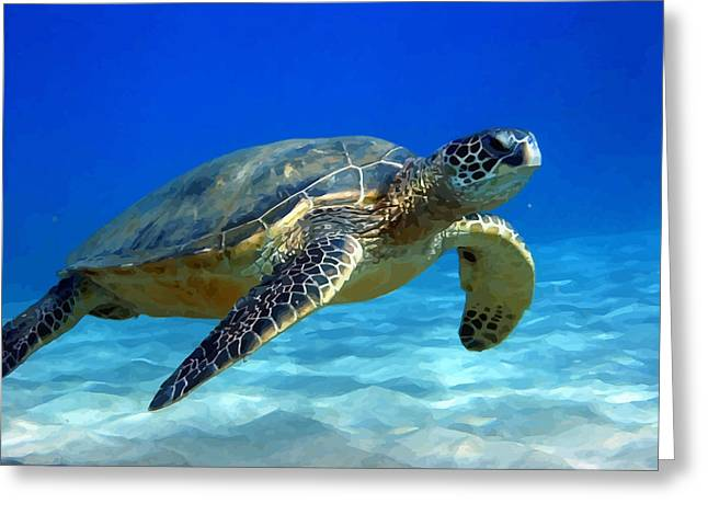 Sea Turtle Blue Greeting Card by Peter Oconor