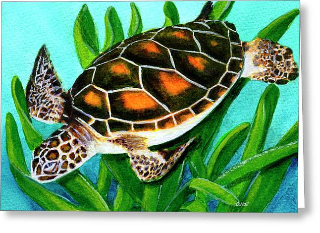 Sea Turtle Honu #352 Greeting Card by Donald k Hall