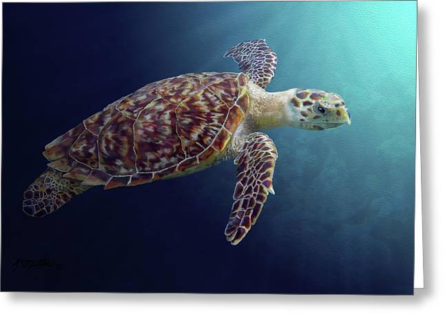 Sea Turtle Greeting Card by Kathie Miller
