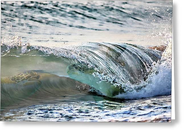 Sea Turtles In The Waves Greeting Card by Barbara Chichester