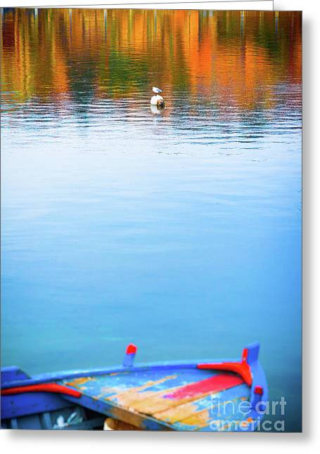 Greeting Card featuring the photograph Seagull And Boat by Silvia Ganora