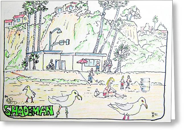 Seagull Beach Greeting Card by Robert Findley