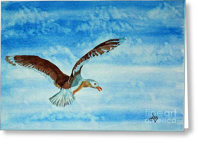 Seagull In Flight Greeting Card by Terri Mills