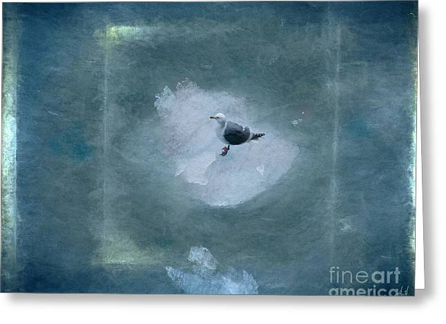 Seagull On Iceflow Greeting Card by Victoria Harrington