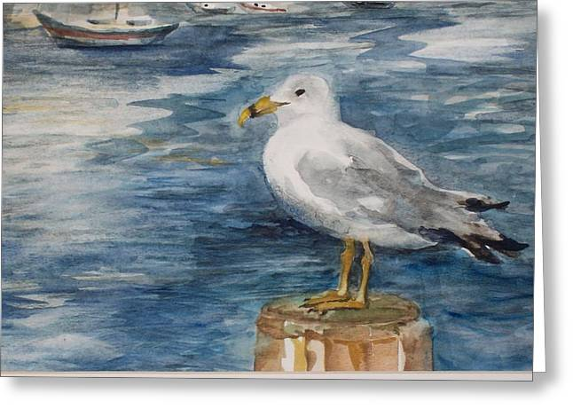 Seagull Greeting Card by Siona Koubek