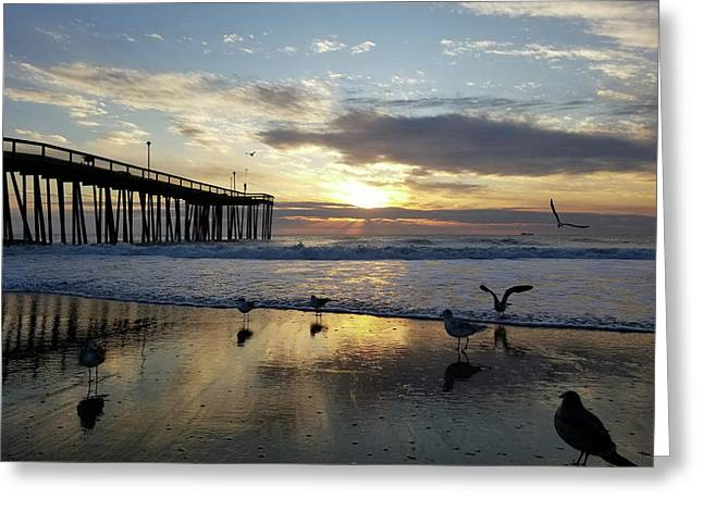 Seagulls And Salty Air Greeting Card