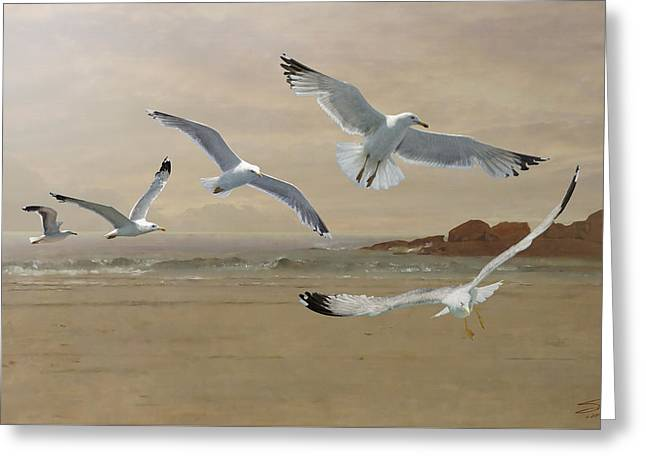 Seagulls Flying Along  The Beachfront Greeting Card by IM Spadecaller