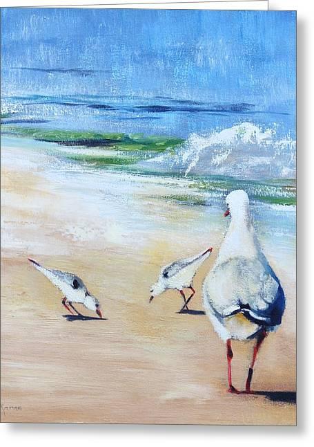 Seagulls Greeting Card by Kathy  Karas