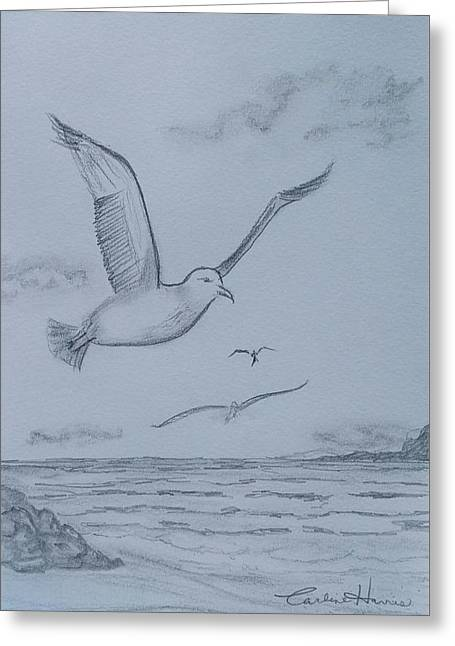 Seagulls Over The Ocean Greeting Card by Carlene Harris