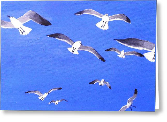 Seagulls Overhead Greeting Card by Anne Marie Brown