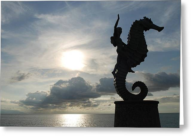 Seahorse Silhouette Greeting Card