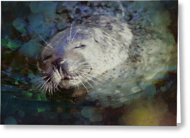 Seal Bliss By Pierre Blanchard Greeting Card by Pierre Blanchard