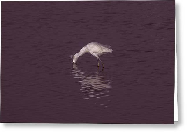 Seascape Gulf Coast, Ms F70b Greeting Card by Otri Park