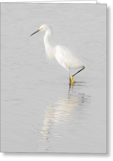 Seascape Gulf Coast, Ms F70l Greeting Card by Otri Park