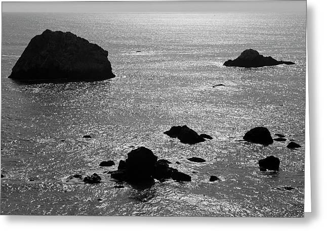 Greeting Card featuring the photograph Seascape Jenner California II Bw by David Gordon