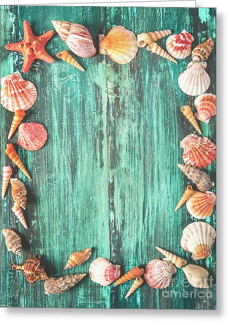 Seashell And Starfish Frame On Wooden Background Greeting Card by Jelena Jovanovic