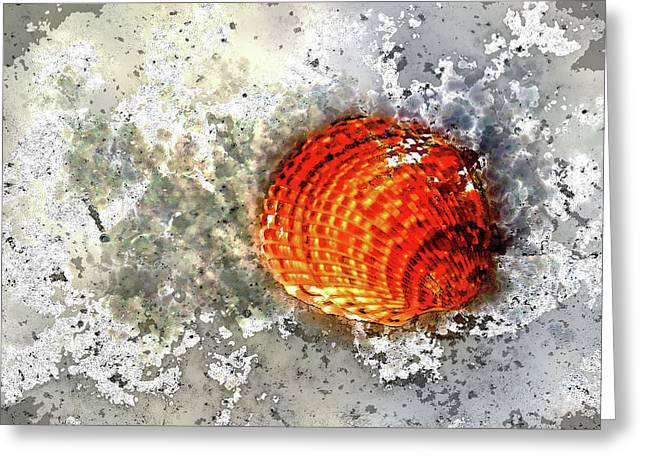 Seashell Art  Greeting Card by HH Photography of Florida