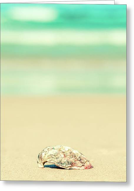 Seashell By The Sea Shore Greeting Card