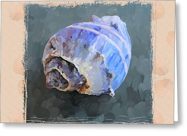 Seashell IIi Grunge With Border Greeting Card