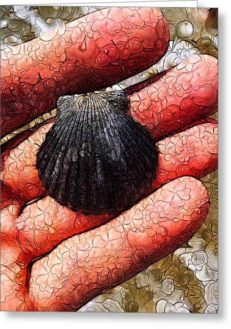 Seashells By The Seashore Greeting Card