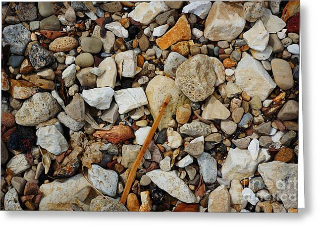Seashore Pebbles  Greeting Card by Celestial Images