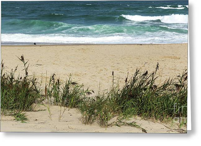 Greeting Card featuring the photograph Seashore Retreat by Michelle Wiarda