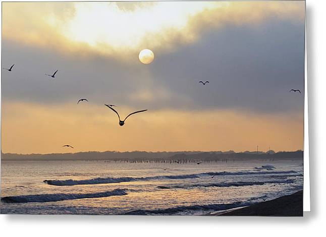 Seaside Sunrise Greeting Card by Bill Cannon