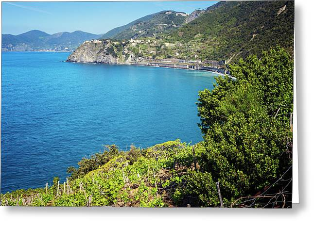 Seaside View From Manarola Cinque Terre Greeting Card by Joan Carroll