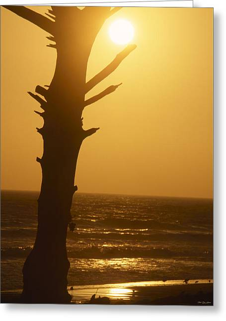 Seaside Wilderness Park Greeting Card