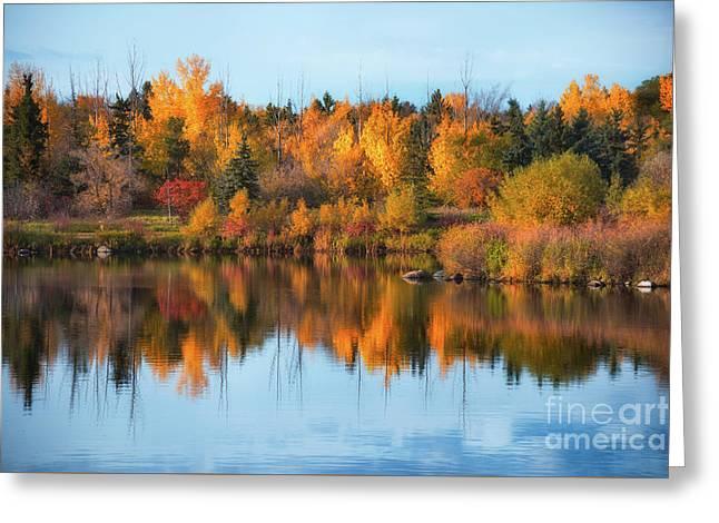 Seasonal Reflection Greeting Card by Ian McGregor