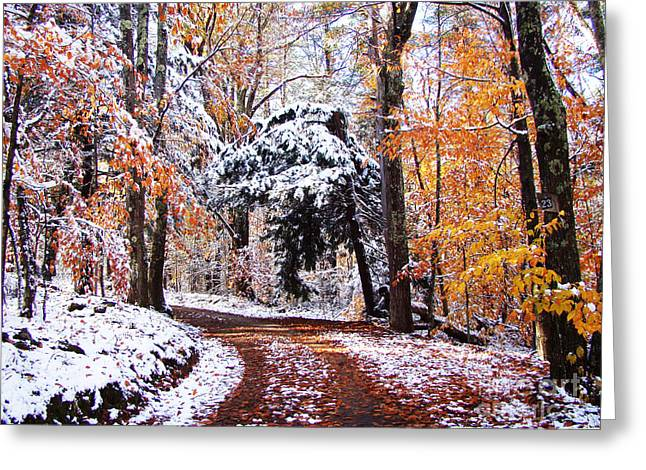 Seasons Cross Greeting Card by Betsy Zimmerli