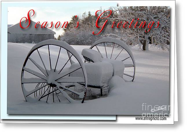 Greeting Card featuring the photograph Seasons Greetings by Alana Ranney