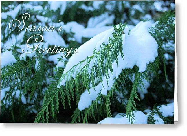 Seasons Greetings Greeting Card- Snow On The Evergreen Greeting Card by Traditionally Unique Photography