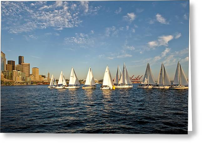 Seattle Sailboat Race Greeting Card by Tom Dowd