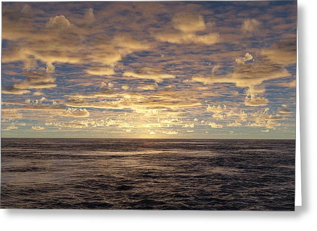 Greeting Card featuring the photograph Seaview by Mark Greenberg