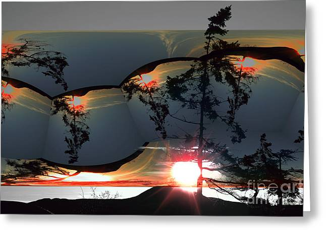Sechelt Tree 12 Greeting Card