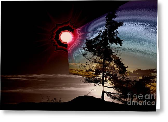 Sechelt Tree Stardust Greeting Card