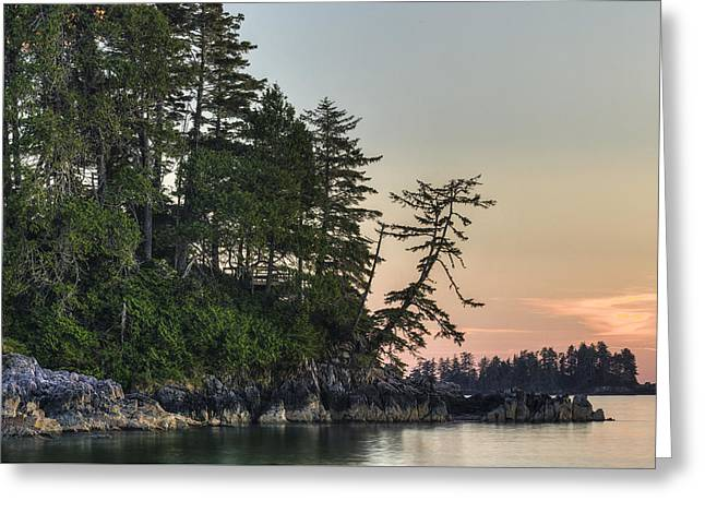 Secluded Tonquin Greeting Card