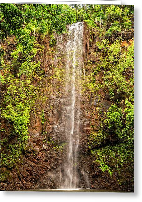 Secret Falls Greeting Card by Brian Harig