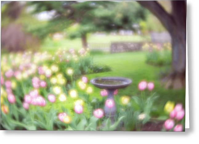 Greeting Card featuring the photograph Secret Garden 2 by Brian Hale