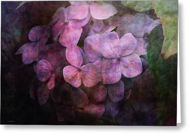 Secret Hydrangea 1538 Idp_2 Greeting Card