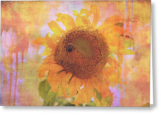 Secret Life Of Bee Greeting Card by Toni Hopper