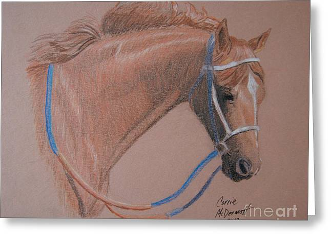 Race Horse Drawings Greeting Cards - Secretariat Greeting Card by Corrie McDermott