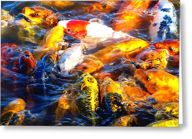 Secrets Of The Wild Koi 17 Greeting Card by September  Stone