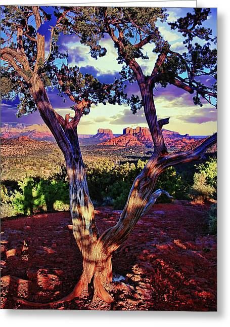 Sedona # 48 - Courthouse And Cathedral Rocks Greeting Card
