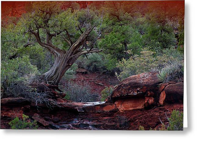 Sedona #1 Greeting Card